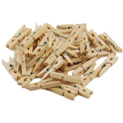 Mini Clothespins - Tiny Pegs