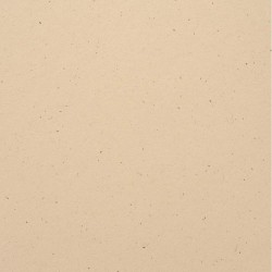 Speckle Cardstock - Natural Stone